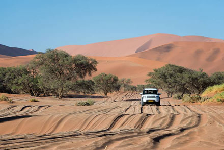 Drive Namibia with Gecko Car Rental